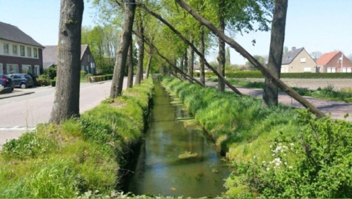 Water in en rond Dongen